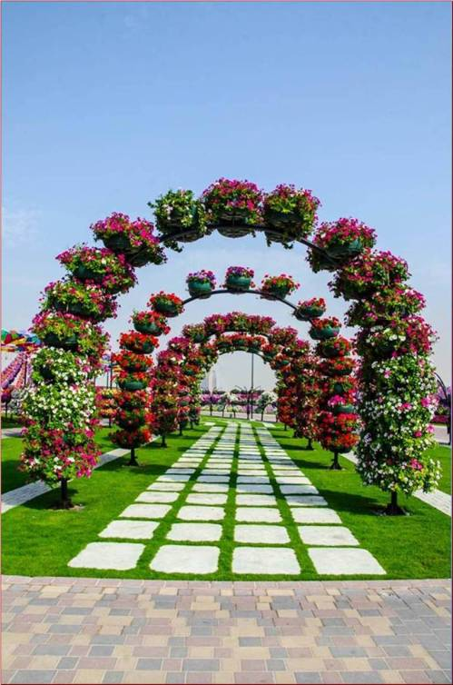let's visit the Miracle Garden in Dubai...